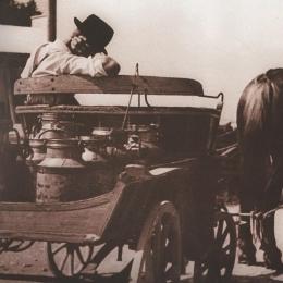 Pomurske mlekarne zgodovina